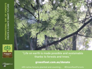 2015IntlForestDay_Greenfleet_thanks to forests and trees