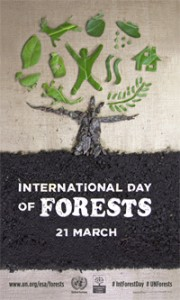 International Day of Forests 2015.03.21